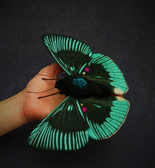 Вышитые мотыльки и бабочки от Юми Окита (10 фото)