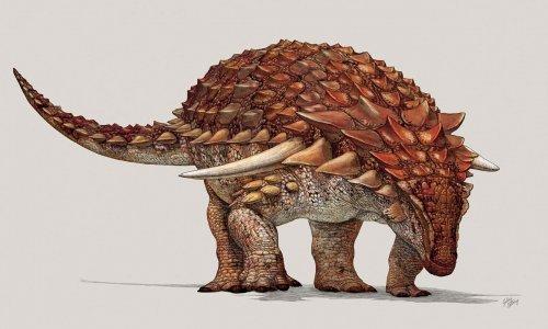 В Канаде обнаружили хорошо сохранившиеся останки динозавра, которые можно принять за скульптуру (3 фото)
