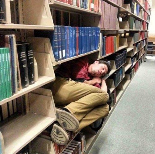 Самые странные места для сна (23 фото)