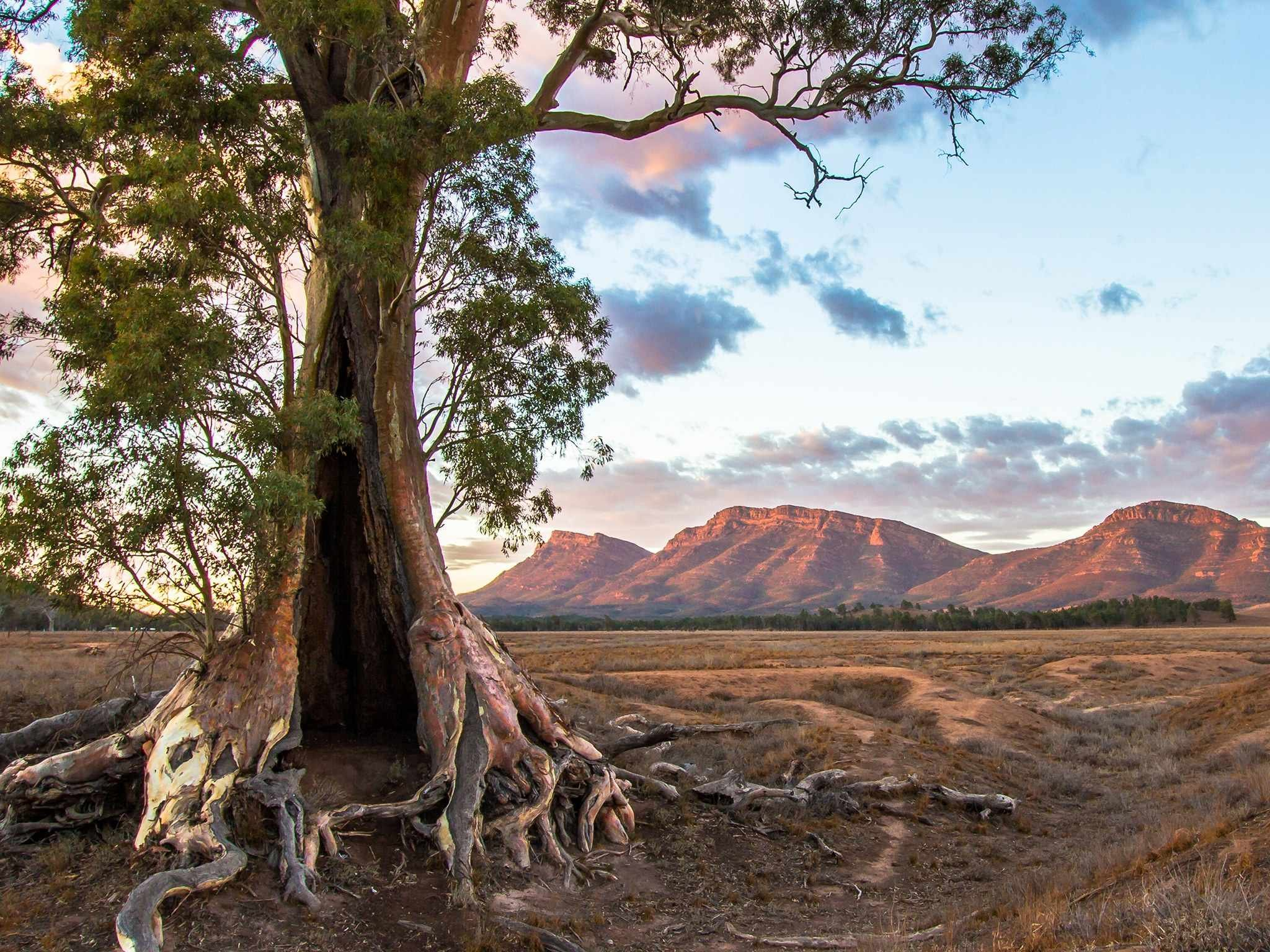 фото красивых мест австралии дионн