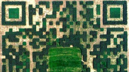 QR-код из 130 тысяч тщательно подстриженных кустарников и деревьев, который можно просканировать с воздуха (3 фото)