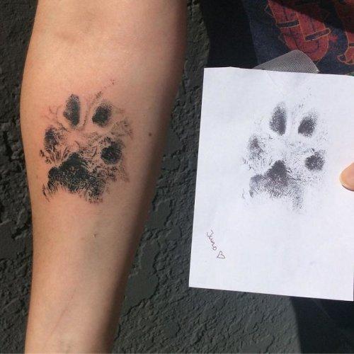 Тату отпечатков лап собак как символ любви и крепкой связи (29 фото)