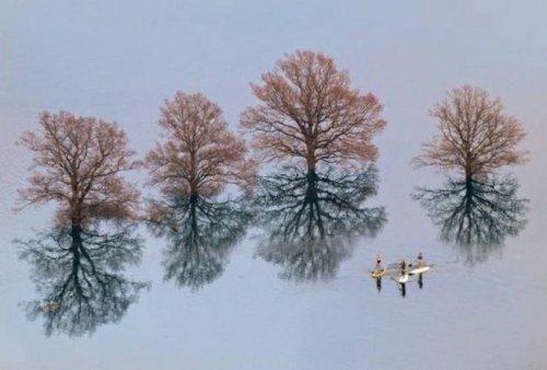 Мир прекрасен и без фотошопа (20 фото)