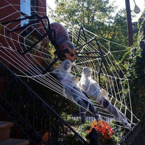 Хэллоуинский креатив (25 фото)