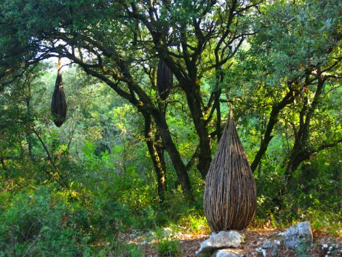 Лесной лэнд-арт Спенсера Байлса (13 фото)