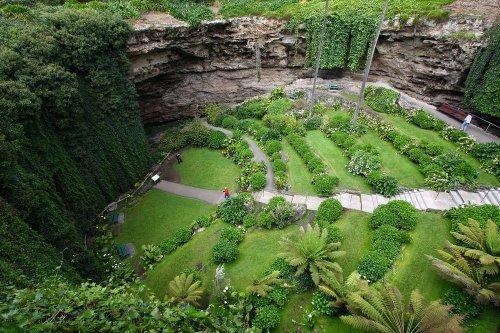 В Австралии в огромной карстовой воронке появился целый сад (4 фото)