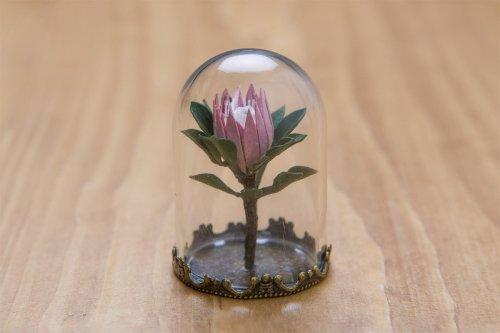 Миниатюрные бумажные растения от художницы Райи Садер Буханы (10 фото)