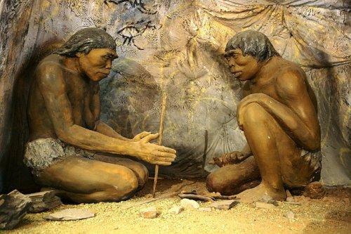 ТОП-20: Дикие факты об эволюции человечества