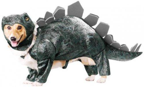 Забавные костюмы для собак на Хэллоуин (29 фото)