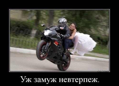 1508222380_demotivatory-2.jpg