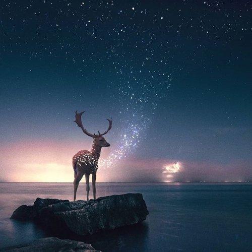 Замечательные фотоманипуляции Рональда Онга (37 фото)