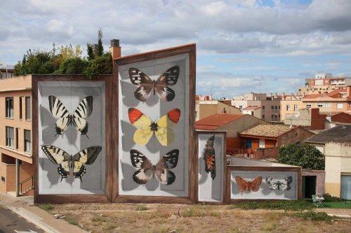 Энтомологический стрит-арт: коллекции бабочек на стенах домов (11 фото)