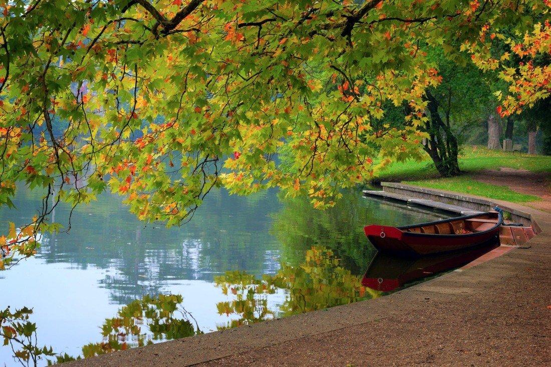 Яркие краски осени (10 фото)
