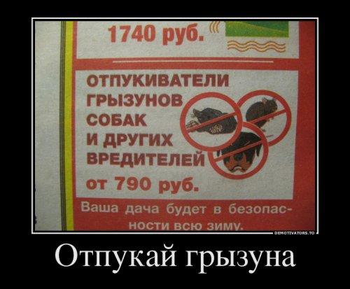 Свежая порция демотиваторов (18 шт)