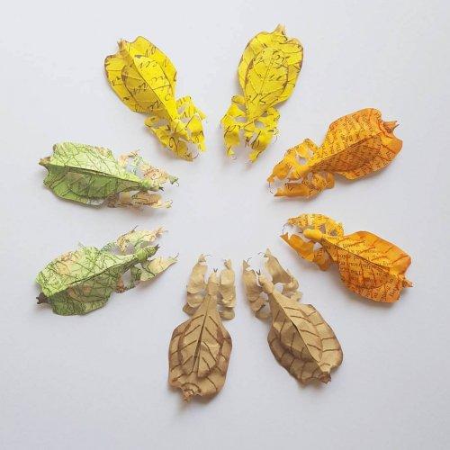 Бумажные скульптуры дикой природы, созданные художницей Кейт Като (9 фото)