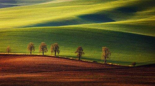Волшебные пейзажи сельской Швейцарии в фотографиях Мартина Рака (14 фото)
