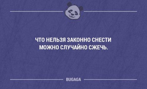 Смешные фразы и мысли в картинках с надписями. Часть 101 (18 шт)