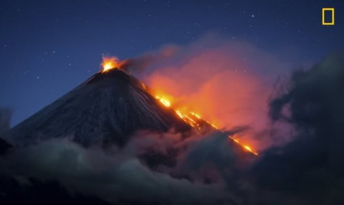 Замечательные фотографии, присланные на фотоконкурс National Geographic Nature Photographer of the Year (15 фото)