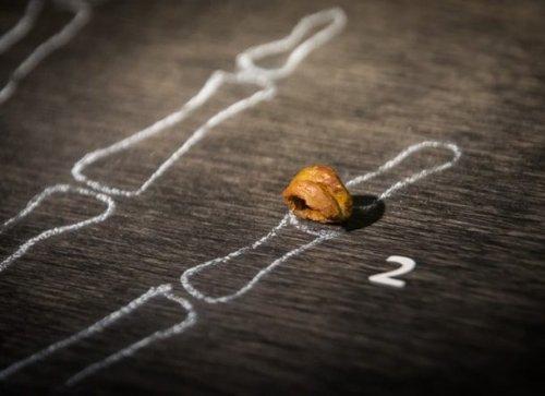 Топ-25: до сих пор не разгаданные тайны эволюции