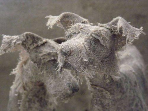 Выразительные скульптуры собак художницы Хелен Томпсон (14 фото)