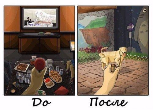Как меняется жизнь в доме, где появляется собака (8 фото)