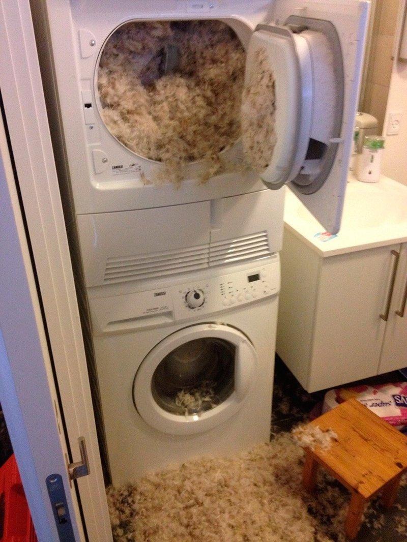 стиральные машины смешные картинки представлены