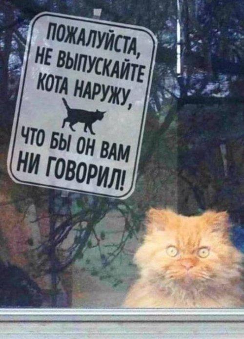 http://www.bugaga.ru/uploads/posts/2017-12/thumbs/1512158579_prikol-19.jpg