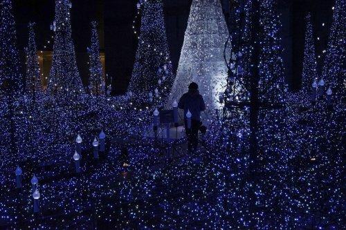 Мир готовится к Рождеству (10 фото)