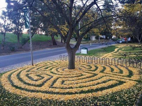 Замысловатые узоры из осенних листьев (28 фото)