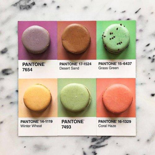 Еда, разложенная по цветам Pantone (28 фото)