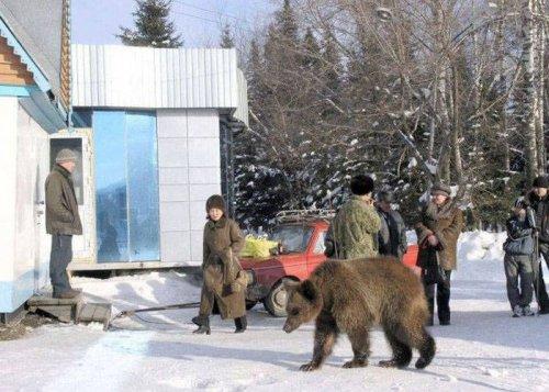 Тем временем где-то в России (19 фото)