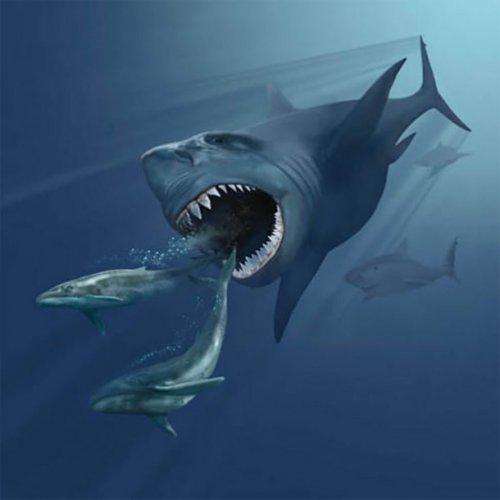 ТОП-25: Невероятные морские монстры, которые когда-то господствовали в океане