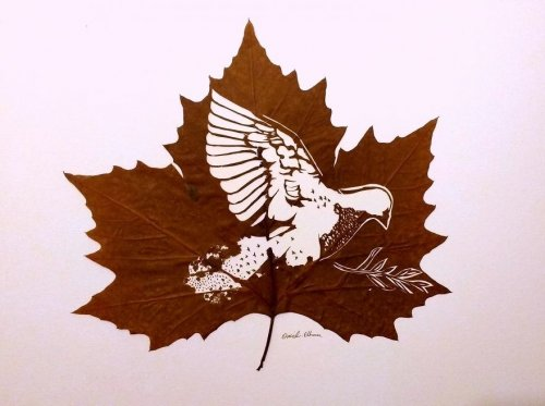 Резные листья Омида Асади (12 фото)