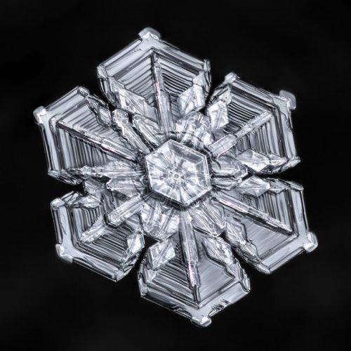 Снежинки крупным планом (12 фото)
