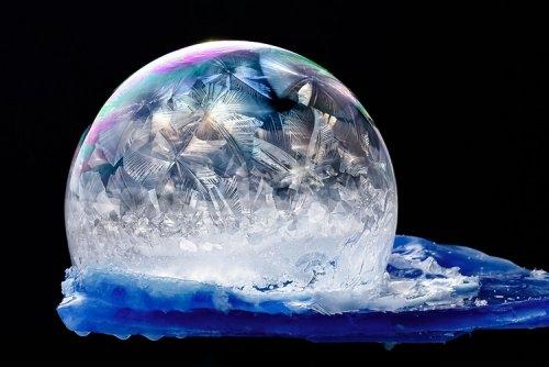 Красота замёрзших мыльных пузырей в фотографиях Хоуп Картер (15 фото)