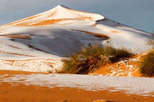 Пока мы ждём снега, он выпадает в Сахаре (13 фото)