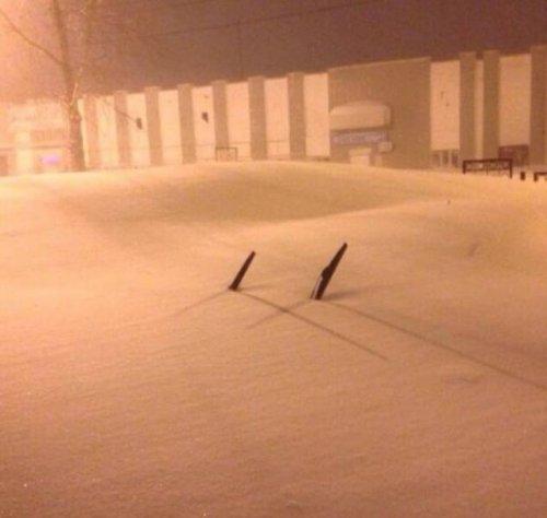 Когда приходит настоящая зима (24 фото)
