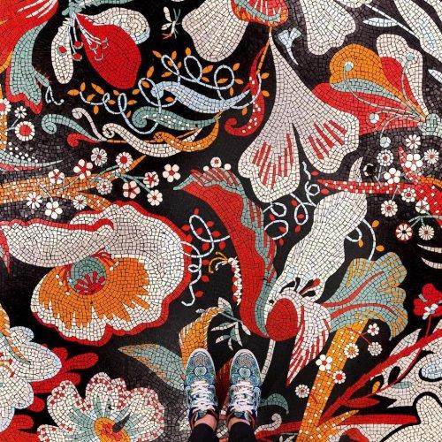 Мозаичные полы в фотографиях Себастьяна Эрраса (8 фото)