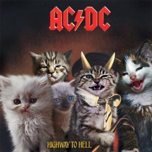 Крутые котята на обложках культовых альбомов (18 фото)