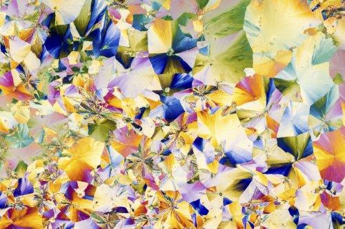 Кристаллизующиеся вещества под микроскопом, похожие на абстрактные картины (15 фото)