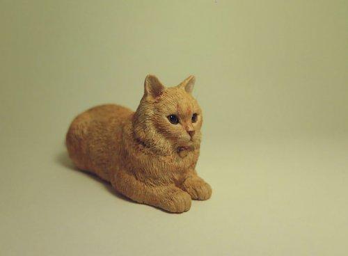 Тайваньская художница создаёт реалистичные миниатюрные статуи кошек (18 фото)