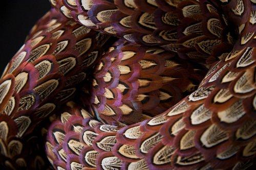 Сюрреалистические змееподобные скульптуры из птичьих перьев (14 фото)