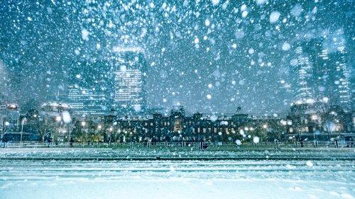 Заснеженный Токио в фотографиях Юити Ёкоты (14 фото)