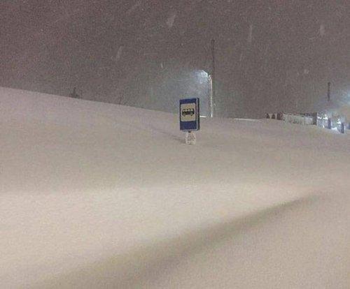 Когда приходит настоящая зима (33 фото)