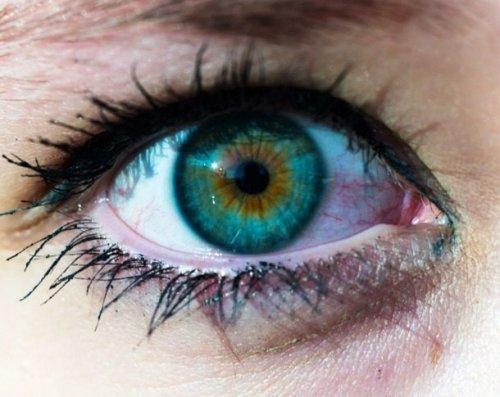 ТОП-25: Блестящие факты про цвета, которые изменят ваш взгляд на вещи