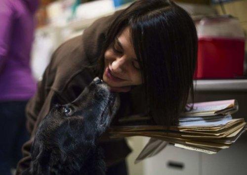 Собака, убежавшая во время прогулки, неожиданно нашлась спустя 10 лет (5 фото)