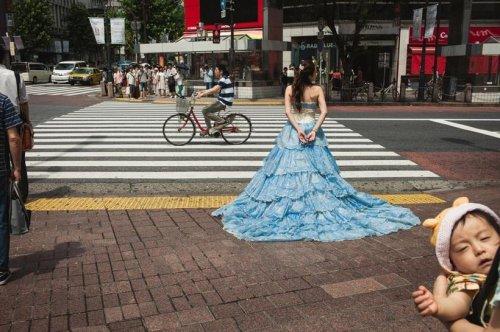 Уличные фотографии Сина Ногути (18 фото)