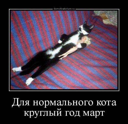 1519371397_demotivatory-1.jpg