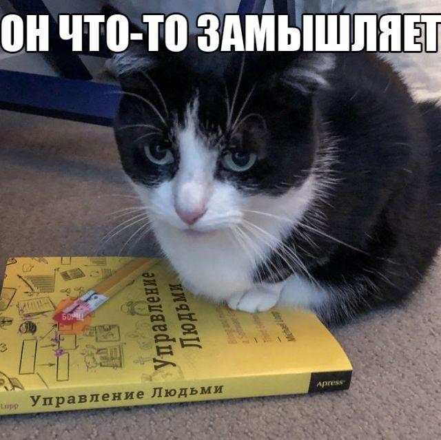 http://www.bugaga.ru/uploads/posts/2018-03/1520792837_kartinki-21.jpg