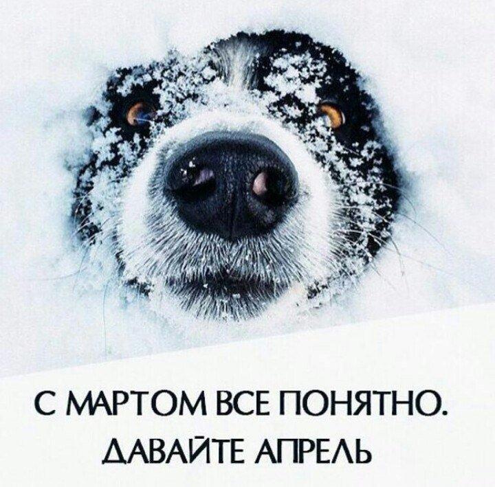 http://www.bugaga.ru/uploads/posts/2018-03/1521142811_fotomemy-11.jpg